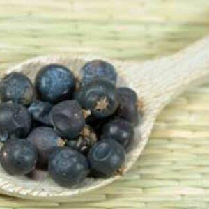 juniper berries home brew flavouring
